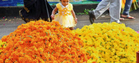 With Onam round the corner, demand for flowers on rise