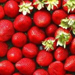 berry-story_647_010416063627