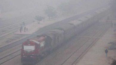 fog train