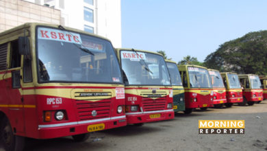 Fly Bus Services